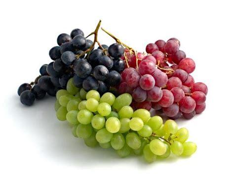 Untuk Menghindari Hamil Anggur Gambar Buah Buahan Daunbuah Com