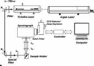 Schematic Diagram Of The Experimental Setup