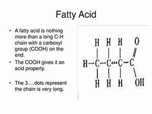 Ppt - Fatty Acid Powerpoint Presentation