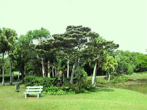Curepipe Botanic Gardens - Wikipedia