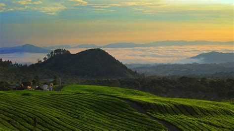 Landscape Pictures View Images Of Indonesia