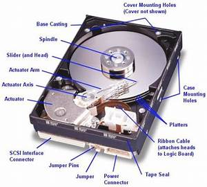Interior Of A Typical Hdd