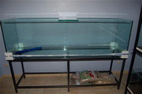 aquarium de 50 litres le 600 litres ma cichlid s room et ses cichlid 233 s du lac