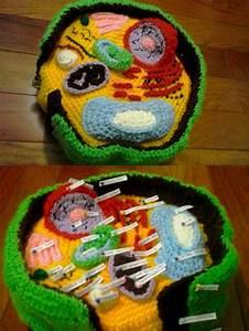 Crocheted Plant Cell