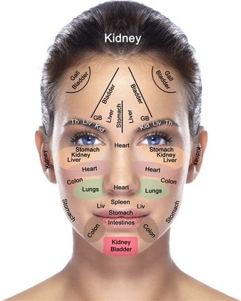 facial mapping call  office   full skin analysis