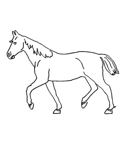 Kleurplaten Shetlanders by Paard Zie Ook Http Www Kleurenisleuk Nl Meisjes Paard