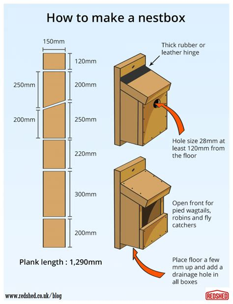 building a bird box nest box for blue tits and great tits