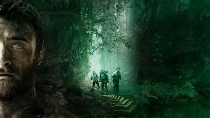 Jungle 4k Wallpapers 1080 1920 1280 1440