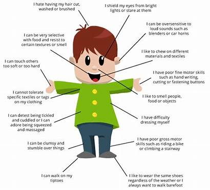 Sensory Autism Processing Disorder Seeker Signs Adults