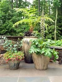 best patio plants design ideas 11 Most Essential Container Garden Design Tips   Designing a Container Garden   Balcony Garden Web