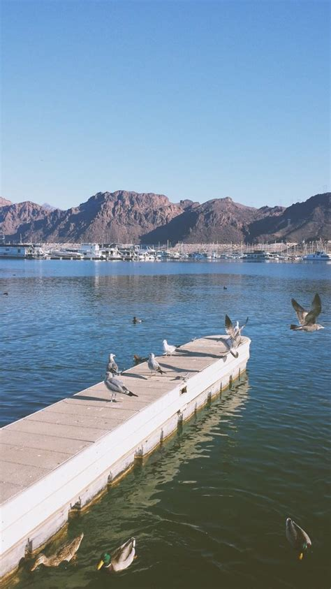 Lake Mead Las Vegas Boat Rentals by Lake Mead Boat Rentals 17 Photos Boat Charters 100
