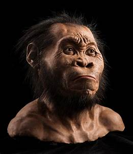 Age Of Ape