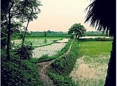 167 best Beautiful Bangladesh images on Pinterest Comic
