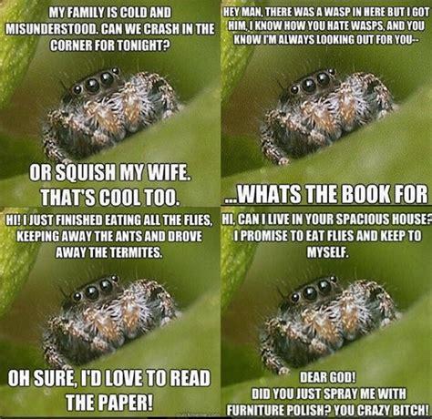 Spider Bro Meme - funniest memes ever 036