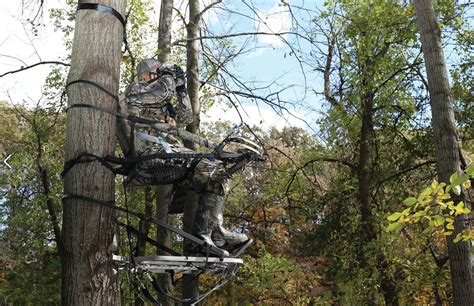 Should You Hang Early Season Tree Stands Over Deer Sign?