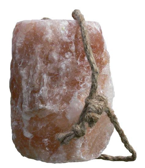 pierre  lecher de lhimalaya top  cheval kramer