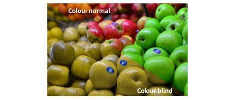 is color blindness a disability colour discrimination chuffed non profit charity and