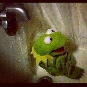 Sad Kermit Sad   Meme Generator
