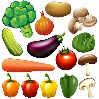 Vegetables Clipart Vegetable Different Verduras Diferentes Fresh