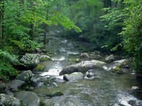 Things to Do Smoky Mountains Tennessee