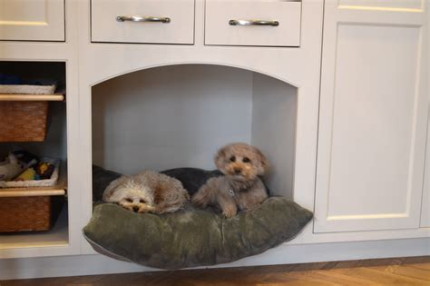 pet owners delight beautiful dog nooks  add
