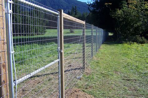 protecting your garden with rabbit and deer fencing