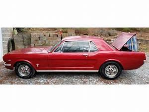 Ford Mustang 1964 : 1964 ford mustang for sale cc 963376 ~ Medecine-chirurgie-esthetiques.com Avis de Voitures