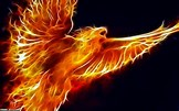 Image result for Cool Backgrounds for Kindle Fire