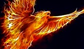 Image result for Kindle Fire Wallpaper Free