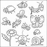 Coloring Insect Insects Pages Bugs Colouring Printable Pdf Preschool Sheets حشرات للتلوين Getdrawings Animal Bee Colorir Sheapeterson Paginas Para Artigo sketch template