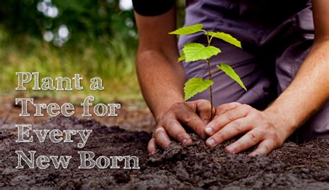 world environment day     eco feminism