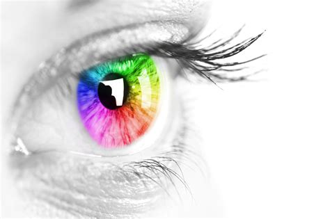 7 Interesting Facts About The Color Of Our Eyes