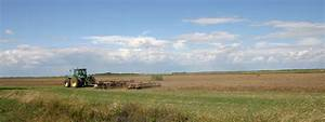 Great Hungarian Plain - Wikiwand  Plain
