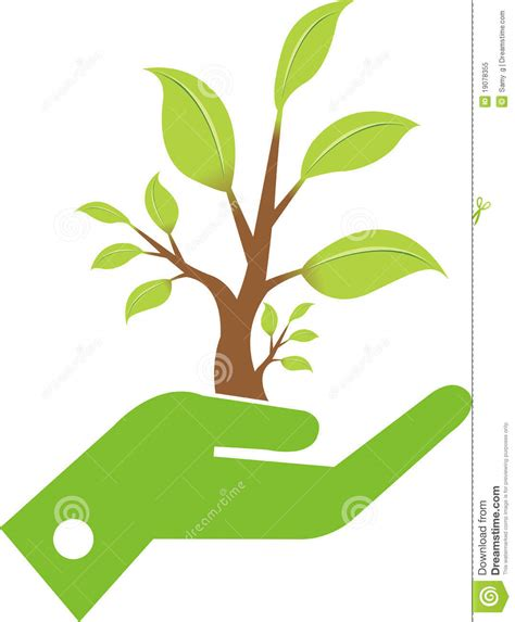 hand leaf royalty  stock photo image