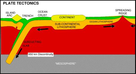 leicester plate tectonics notes