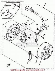 Yamaha Chappy Fuel Diagram  Yamaha  Free Engine Image For