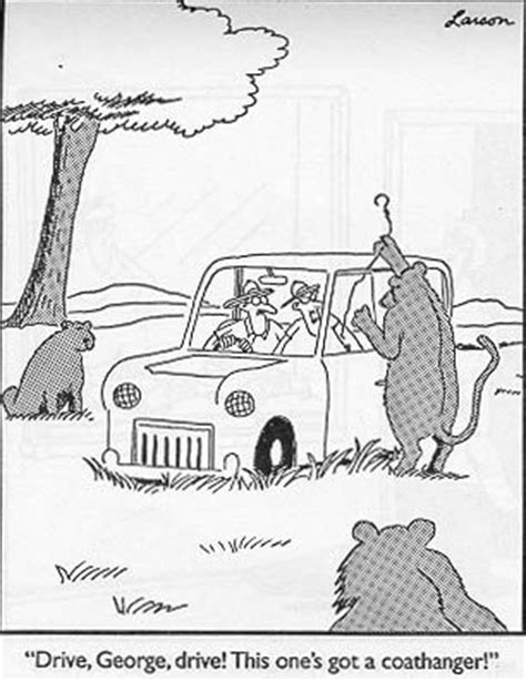 13 'The Far Side' comic strips featuring cats!