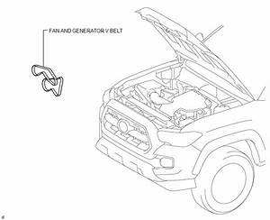 Toyota Tacoma 2015-2018 Service Manual  Drive Belt