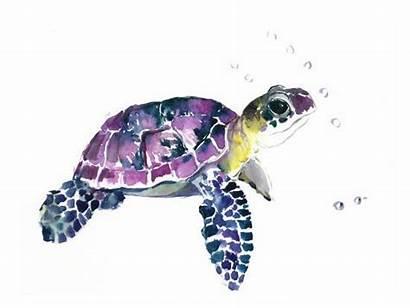 Turtle Sea Painting Turtles Watercolor Yellow Paintings