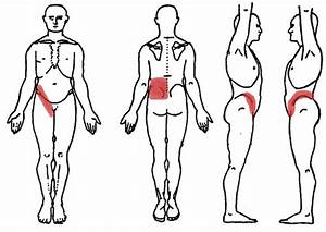 12 Common Causes Of Lower Right Back Pain