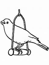 Canary Coloring Pages Bird Cage Birds Printable Getcolorings Colors Colorings Recommended sketch template