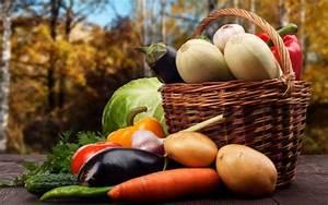 Народные средства для поджелудочной железы и печени