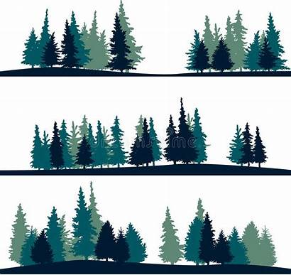 Landscape Fir Trees Vector Tree Silhouettes Spruce
