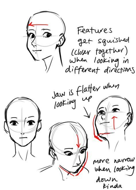 ideas  drawing reference head positions art