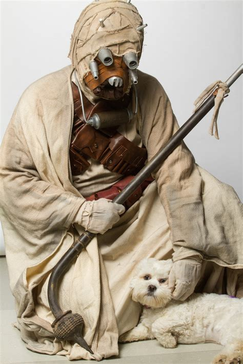 star wars characters pose  pets