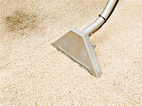 How To Get Pet Stains Out Of Carpet Houston Custom Carpets Flooring And Remodeling Kingwood Tx Dry Solutions Carpet Cleaning Grand Rapids Mi Melrose Shade Jungle Jaguar Python Care Sheet Presto Texarkana Services H M Guthrie Ok Corinium