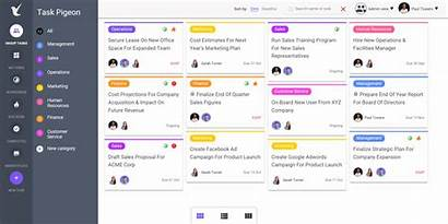 Task Project Management Multiple Dashboard Team Views