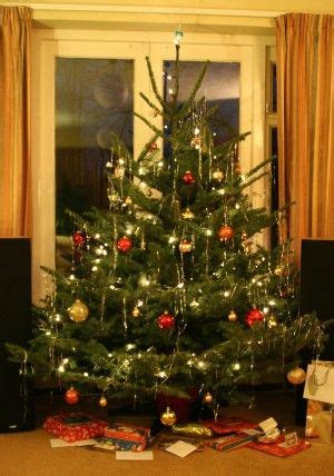 best care for real christmas tree 25 best ideas about real tree on tree buy tree and