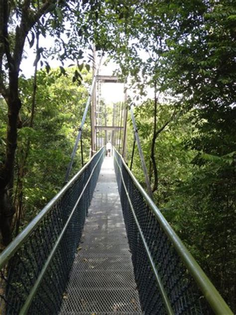 macritchie nature trail singapore address