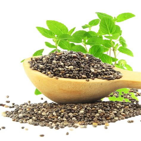 Buy Organic Chia Seeds From Foodtolivecom Free Shipping